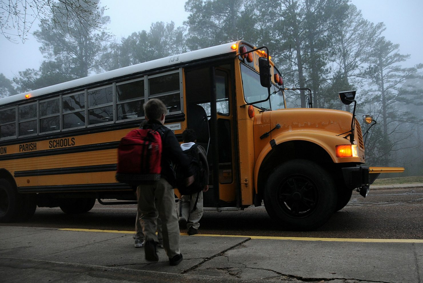 Are Buses Safer or More Dangerous Than Cars?