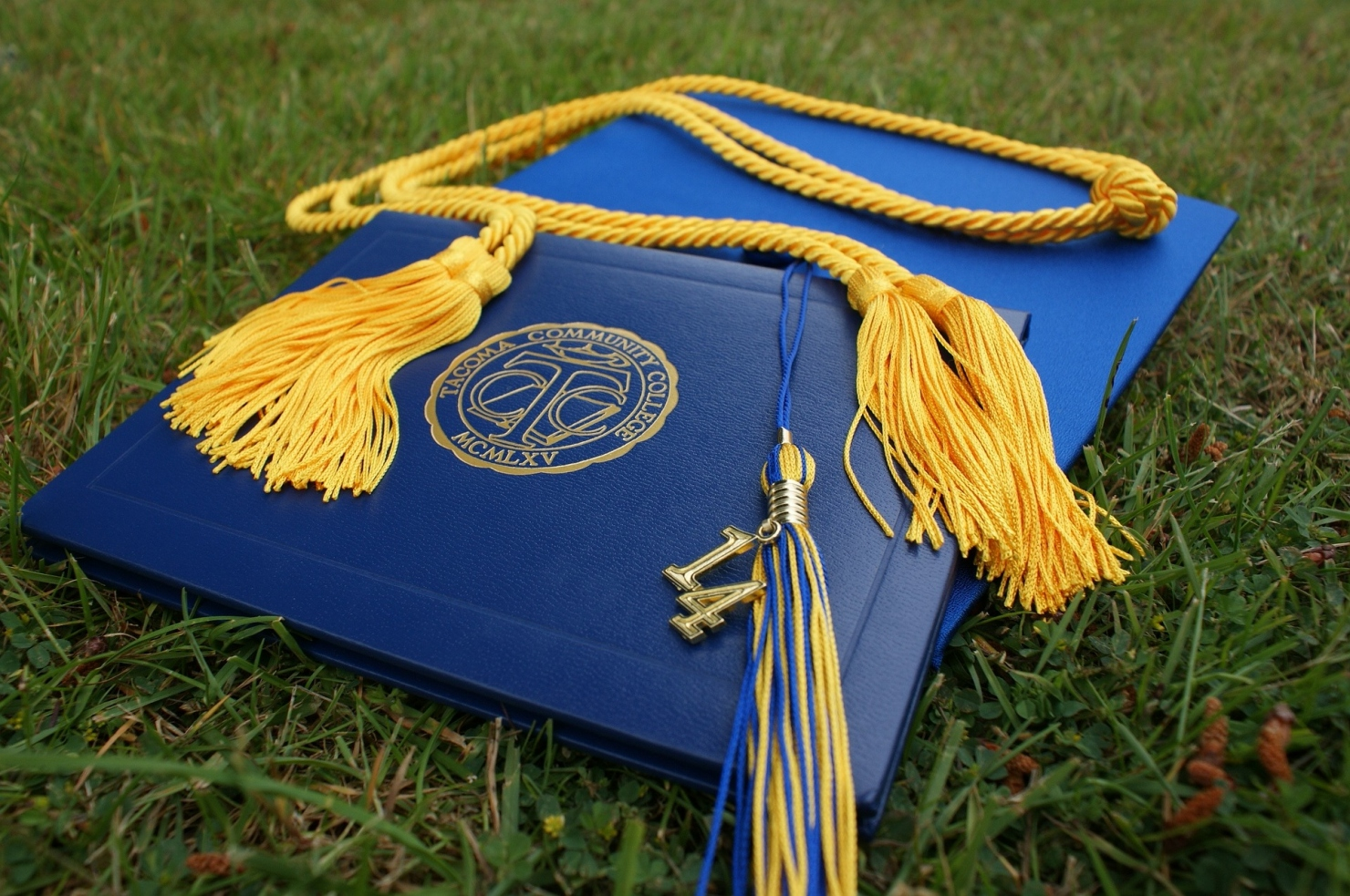 How Valuable Is A Business Degree, Really?